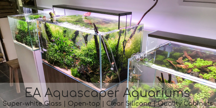 Aquascaper Aquariums